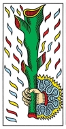 CBD Ace of Wands